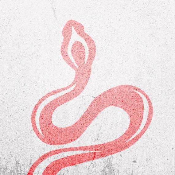 Logo design for Cobra Shop by Ana Balog design